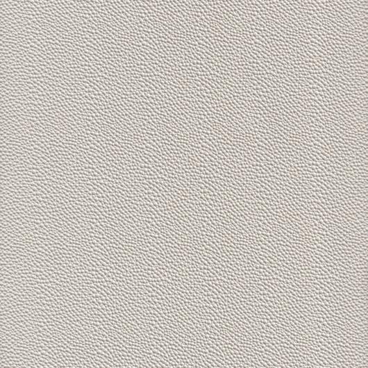 Picture of Cortex Pearl